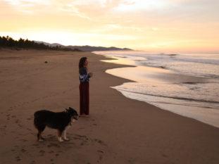 Find Peace at Playa Viva
